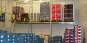 super456-palletstelling-windig-01.jpg
